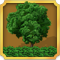 Quest Task Place Gardening-icon