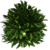 Marketplace Bush 3-icon