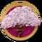 Lasting Love Questline-icon