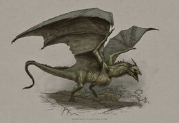 Swamp Wyvern by Kevin Catalan©