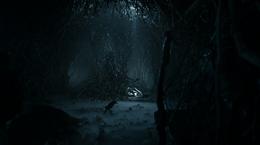 Cueva cuervo de tres ojos HBO
