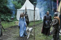 Sansa Dama HBO