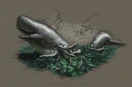 Leviathan by Kevin Catalan©