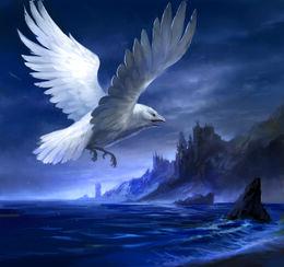 White Raven by by Sandara, Fantasy Flight Games©