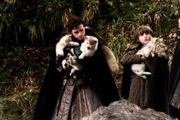 Robb, Bran y huargos HBO