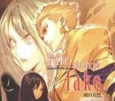 Mainpage Cover Fate Strange Fake