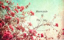 Flowers-tumblr-flowers-33623942-1200-750