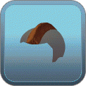 LOW MOHAWK (BROWN)