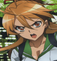 Rei Tolerate.png