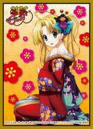 Asia Card Sleeve