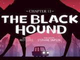 Capítulo 13: El perro negro