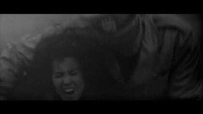 The Hindenburg disaster (HD)