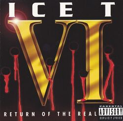 VI- Return of the Real
