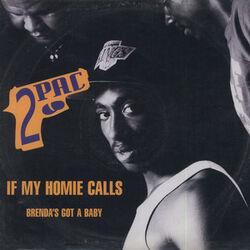 If My Homie Calls
