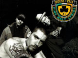 House of Pain (album)