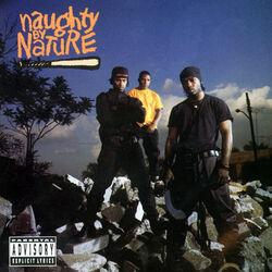 Naughty by Nature album