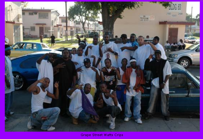 Grape Street Watts Crips | Hip-Hop Database Wiki | FANDOM powered by