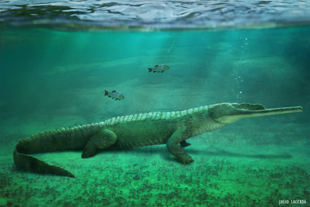 File:Mystriosuchus.png