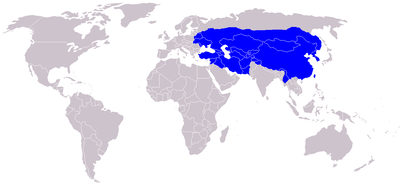 home map world empires mongol empire finalpng image mongol empire finalpng