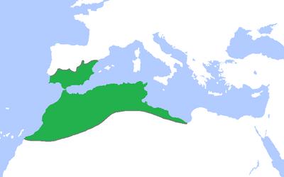 Almohads-1200