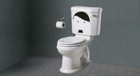 Hitler Toilet