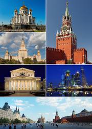 MSK Collage 2015