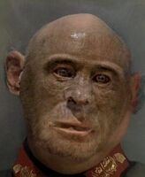 Jodl Ape