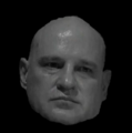 Jolds head