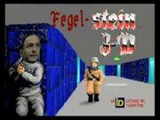 Fegel-Stein3-D