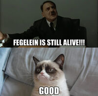 Grumpy Cat Fegelein Still Alive
