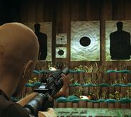 AR-15 в тире