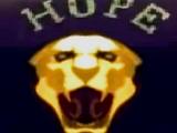 Пумы Хоупа