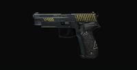 JAGD P22G dell'Agenzia