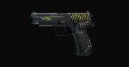 Agency Jagd P22G