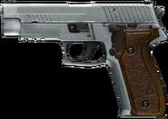 JAGD P22G render