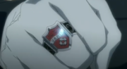 800px-Squalo's Ring