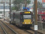 CIMG0356(1)