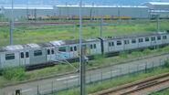 M-train at SHD