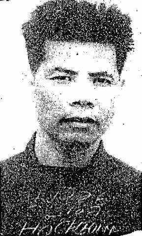 檔案:KSMP Ho Cheung portrait.png