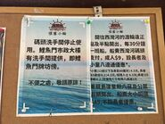 Coral Sea Ferry notice in Sam Ka Chuen