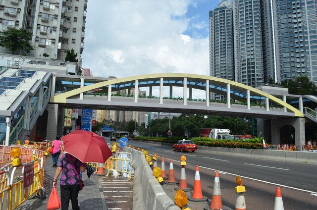 檔案:Lung Cheung Road 20120630.JPG