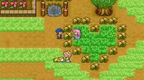 Harvest Moon Snes - Nina Ending