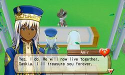 Amir Marriage