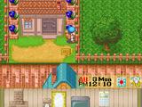 Town Cottage (FoMT)