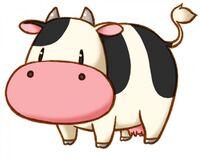 Cow tott