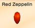 Red-zeppelin