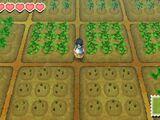 Crops (SoS)