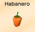 Hotpepper-habanero