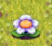 Flower-forage