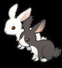 Rabbits (ToT)